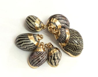 Natural Sea Shell Pendant | 18K Gold Plated Spiral Conch Shell | Sold Individually | Size 18~23x11~16mm