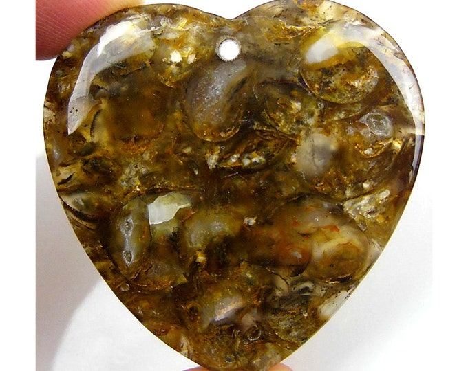 Beautiful Brown Snail Fossil Heart Pendant Focal Bead 42x41x6mm C25805