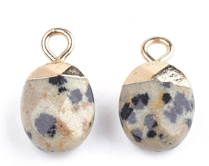 Dalmatian Jasper Gemstone Pendant   Faceted Oval Loose Beads   with Iron Findings   Gold Edged   Sold by Pkg 5 Pcs   Size 14~15x8x5~5.5mm