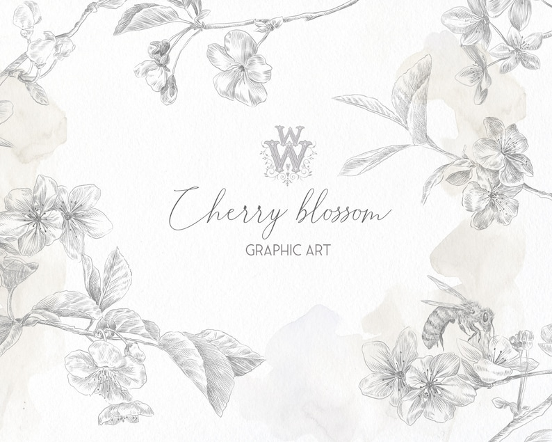 Floral Graphic Png Clipart Fine Art Wedding Invitation Flower Line Nature Bee Spring Leaves Botanical Black Outline Cherry Pencil Drawing