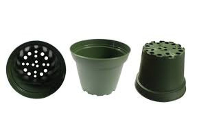 Azalea Style ~ Pots ARE 6 Inch Round At the Top and 5/'/' Inch Deep. 100 New 6 Inch teku Plastic Nursery Pots FREE SHIPPING