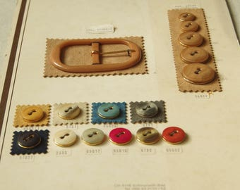 30's Vintage Button & Buckle Set Card. N4. Sample Card. Switzerland. Vintage clothing supplies. Photo props. Display.