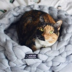 Chunky knit PET BED. 100% merino wool. Handmade in the USA.