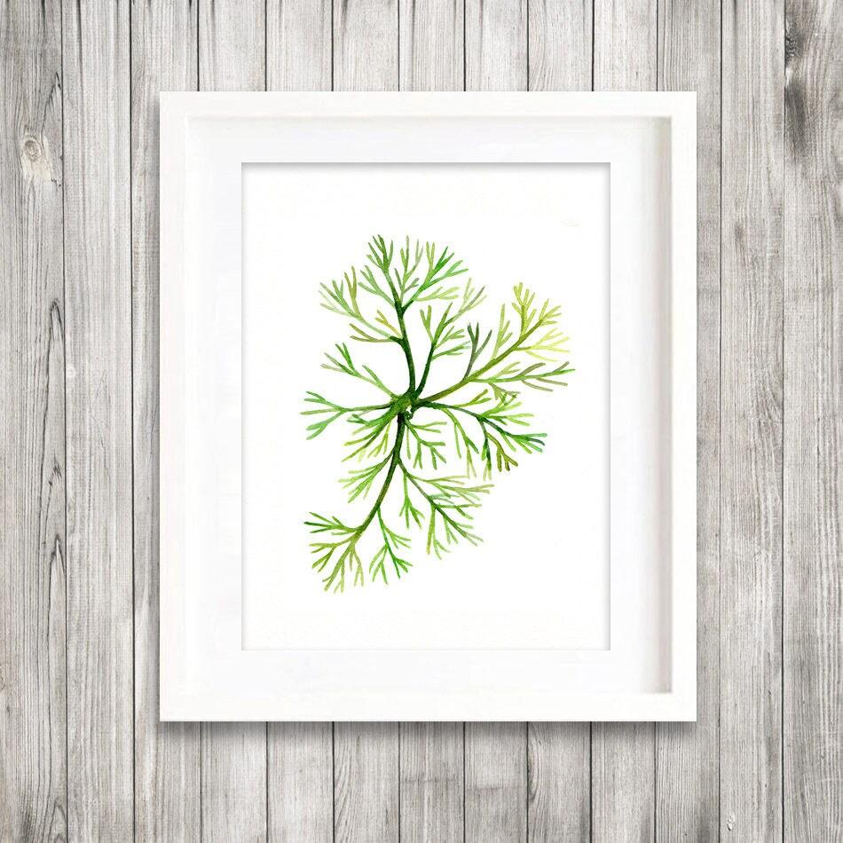 Grünes Meer Finger Algen Aquarell Druck grünen Blättern   Etsy