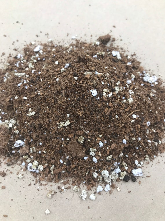 Coco Coir Mix for Tropical Plants (Ideal for propagating, acclimating and healthy maintenance of tropical houseplants) - 1kg bag