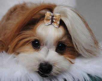 pet hair accessories,dog hair accessories,puppy hair clips DINAS CLOUD unique dog bow *dog bone design Dog hair bow