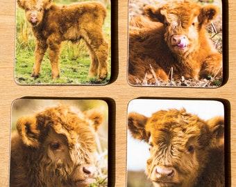 Set of 4 Highland Cattle Coasters