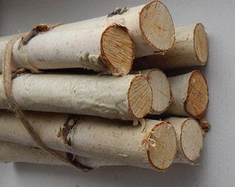 SALE! 10 Birch logs. Wood sticks. Birch tree. Decor for fireplace.Craft birch.White birch logs Decoration birch. decoration logs Craft logs