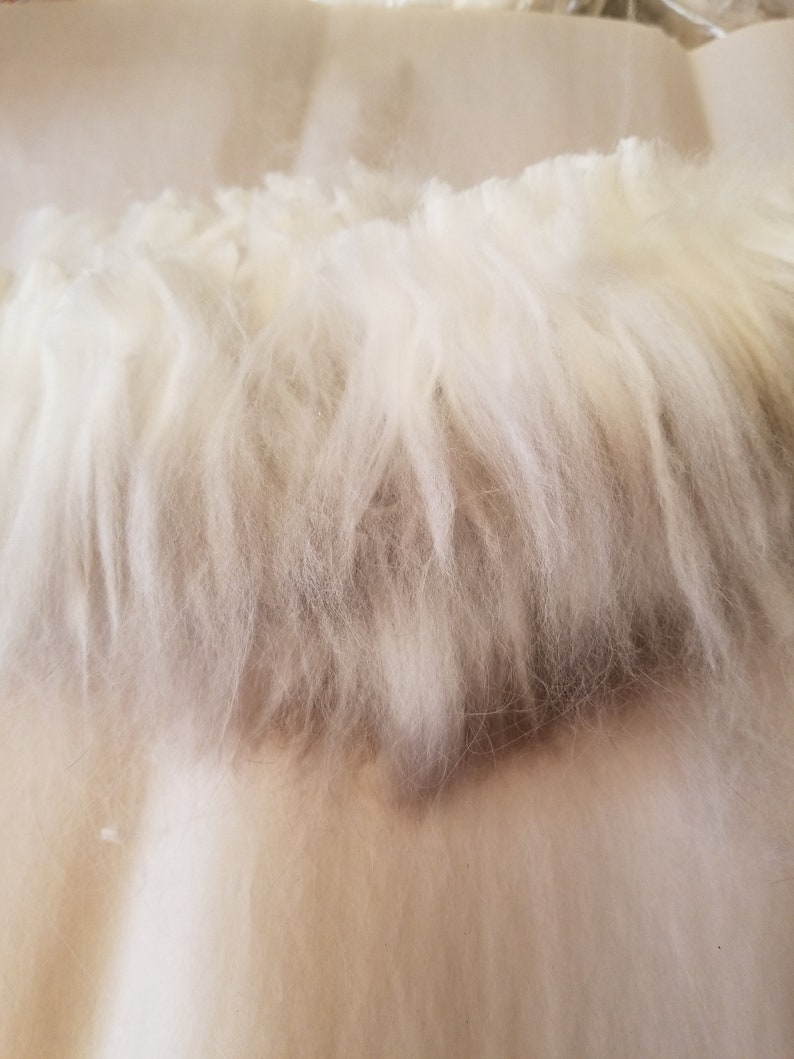 5 ounces of clipped Brown Angora raw wool