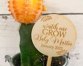 Watch Me Grow Succulent Tags Baby Shower Favors Succulent Tags Watch Me Grow Favor Tags Watch Me Grow Sticks Succulent Not Included