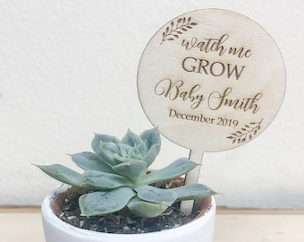 Watch Me Grow Succulent Tags | Baby Shower Favors | Succulent Tags |Watch Me Grow Favor Tags |Watch Me Grow Sticks| *Succulent Not Included*