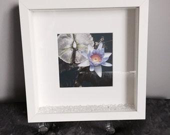 Zen Sacred Lotus Print with Frame