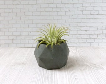 mini geometric cement planter // desk accessory // wedding favor // unique gift // air plant // concrete planter // birthday gift