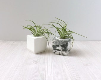 mini square cement planter // marbled or white // cute desk accessory // air plant // wedding favor // minimal home decor // unique gift