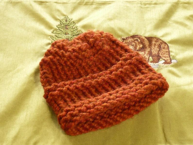 10f6746dea4 NEW Baby Stocking Cap Spice 6 Baby Winter Hat. Baby
