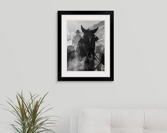 Black and White Ranch Horse Decor 11x14 Framed Photo Print, Wyoming Western Decor Framed Wall Art, Cowboy Horse Lover Gift