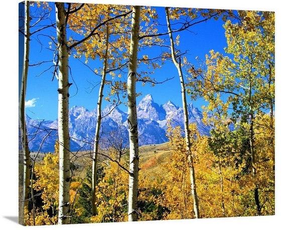 Grand Teton National Park Wall Art Mountain Canvas Photo Etsy