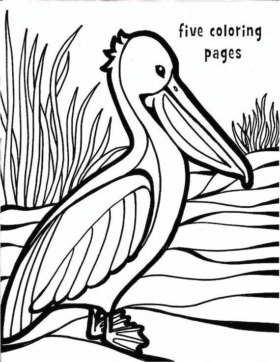 Artículos similares a Pelican para colorear página hoja para ...