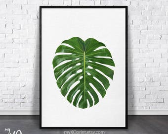 Greenery Print, Monstera Leaf Print, Jungle Leaf, Green Leaves Photo, Tropical Decor, Large Printable Art, Minimalist Leaf, Spring Wall Art