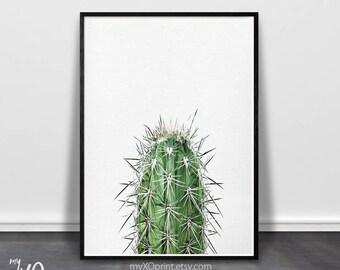 Cactus Decor, Cactus Print, Modern Wall Art, Desert Art, Southwestern Art, Minimalist Large Digital Poster, Printable Art, Botanical Plant