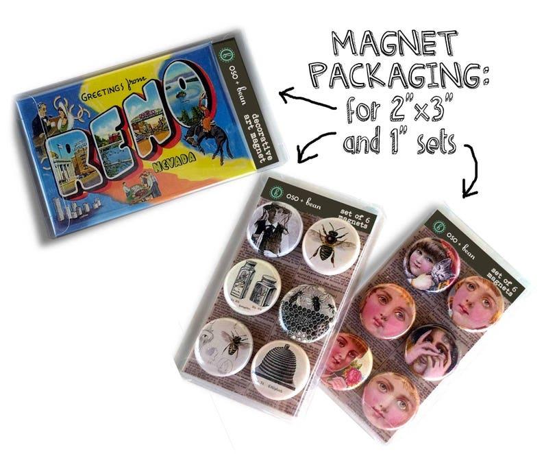 Alice Art Print Magnet Gift under 20 Tea Party Print Alice in Wonderland Magnet Set Hookah Cheshire Cat Magnet