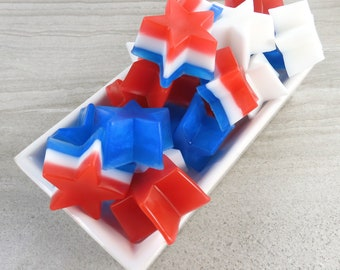 Set of 10 Happy Independence Day Item 1553A 4th of July Favor Bags