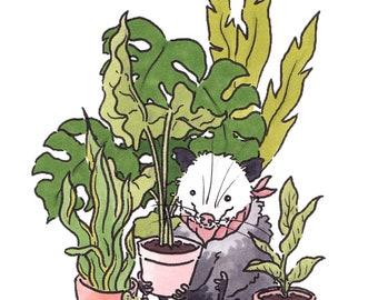 Plant Boy (sticker)