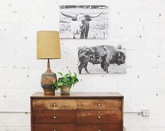 Bison Canvas Buffalo Canvas