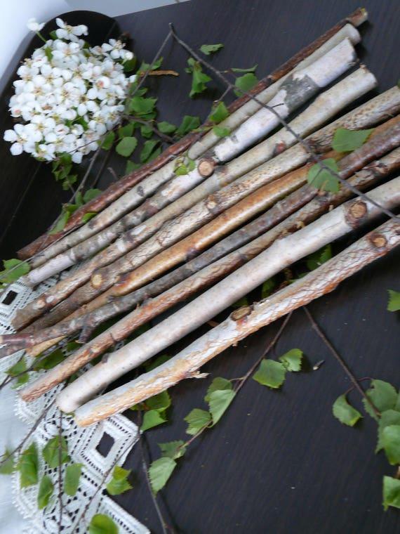 10 White Birch Branches Birch Logs Birch Wood Home Decor