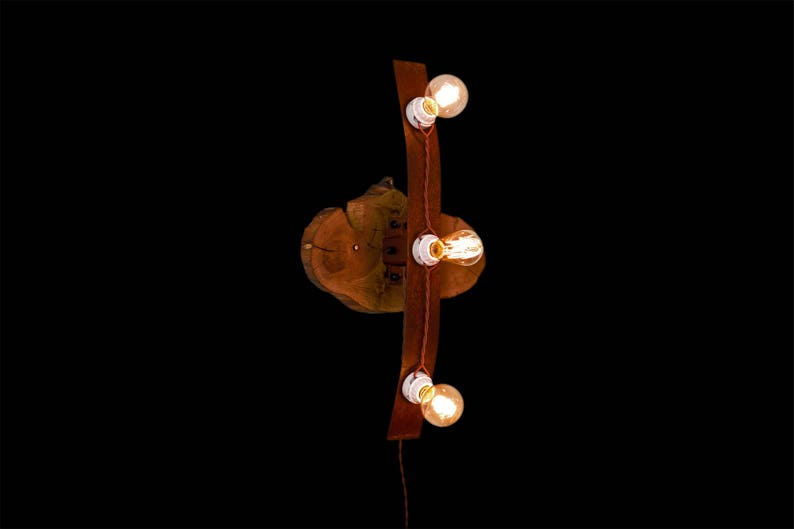 Rustic Industrial Wood Slab Wall Lamp Sconce with Rust Patina image 0