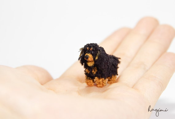 Miniature Black Tan Cavalier King Charles Spaniel Tiny Etsy