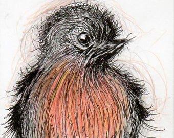Baby Bird Greetings Card