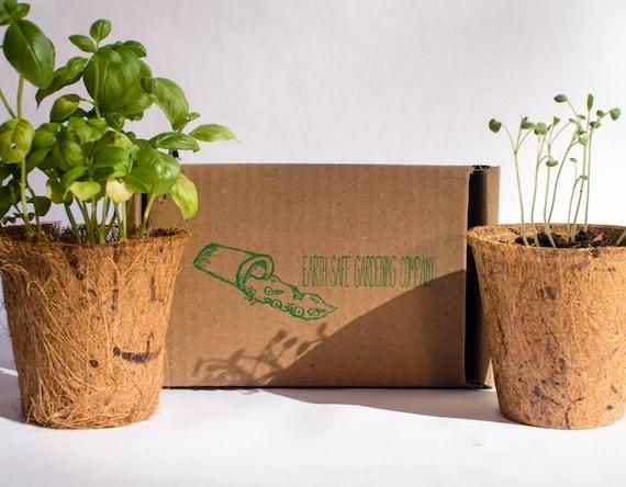 image 0 - Indoor Herb Garden Kit
