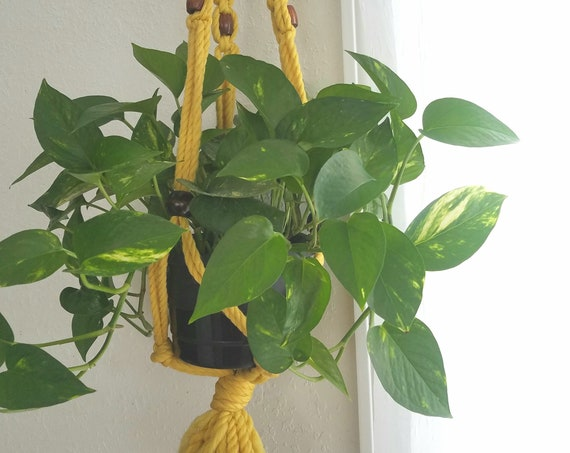 Yellow Macrame Plant Holder