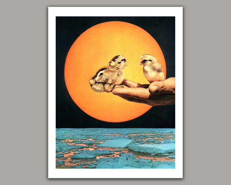 Surreal Collage Art Print Birds and Sun 8x10 print 11x14 11x14 inches