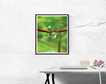 Drop Water Print,Drop Water Photography, Drop Water Wall Art,Nature Art,Printable Art
