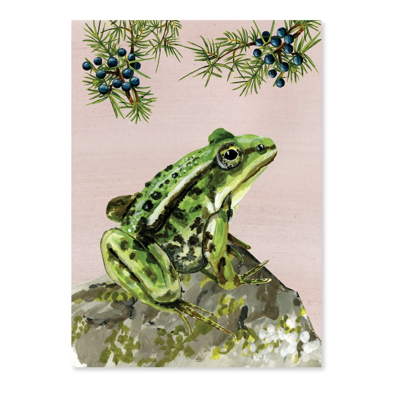 Adventure on the moors  Green Frog image 0