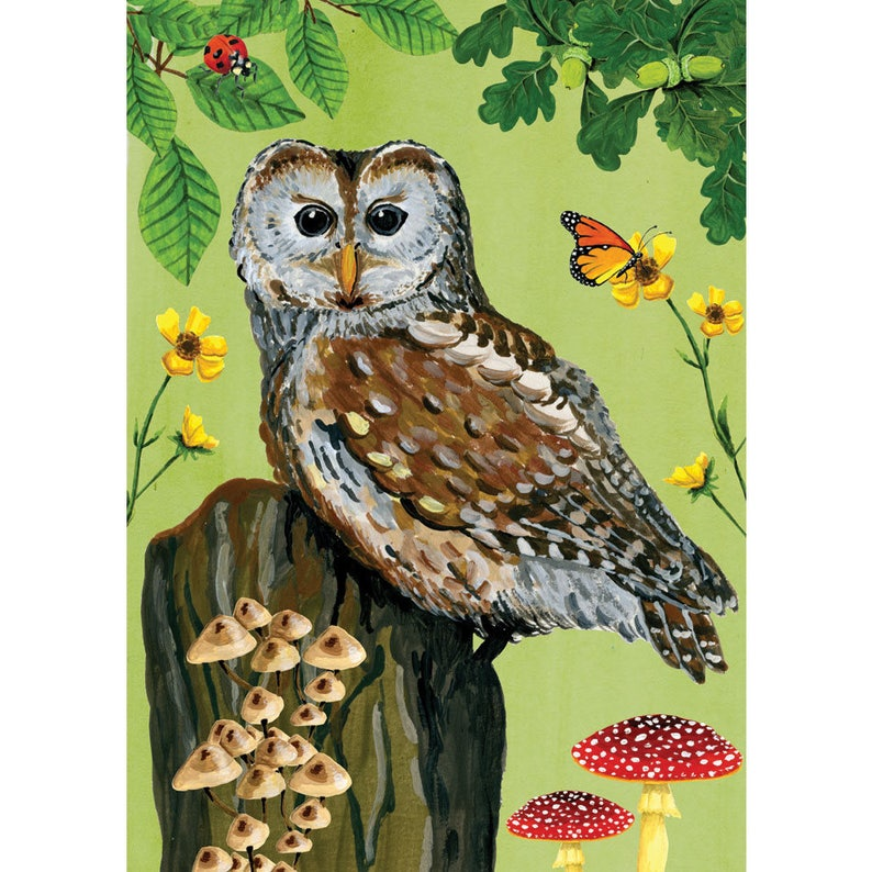 Adventure in the forest  Owl image 0