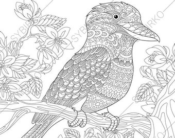 Elegant Australian Kingfisher. Coloring Pages. Animal Coloring Book Pages For  Adults.