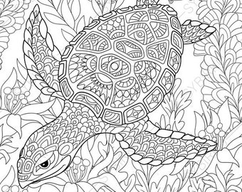 Turtle coloring page | Etsy