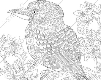 Australian Kingfisher. Coloring Pages. Animal Coloring Book Pages For  Adults.