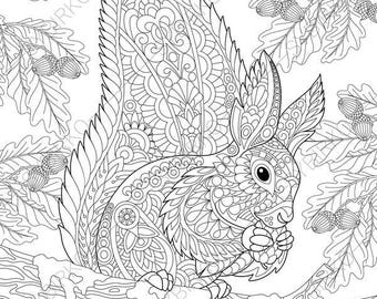 Squirrel. 3 Coloring Pages. Animal coloring book pages for Adults. Instant Download Print