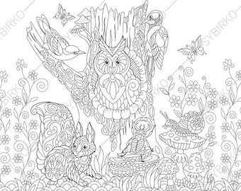 Forest Animals Owl Squirrel Beetle Snail Jay Bird Woodpecker Coloring Pages Book For Kids And Adults Instant Print
