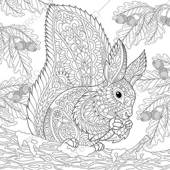 Coloring Pages For Adults Squirrel Forest Woodland Wildlife Animals Colouring Page Coloring Book Instant Download Print