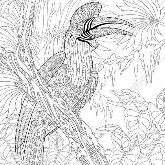Hornbill Bird. Coloring Pages. Animal coloring book pages for | Etsy