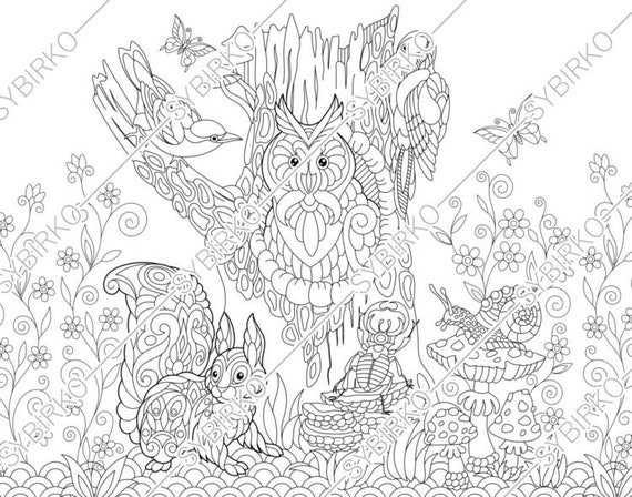 Coloring Pages For Adults Owl Squirrel Birds Adult Coloring Etsy