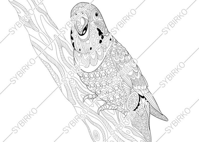 Coloring Pages For Adults Budgie Parrot Adult Etsyrhetsy: Budgie Bird Coloring Pages At Baymontmadison.com