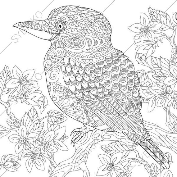 Kookaburra Bird. Australian Kingfisher. Coloring Pages. Animal | Etsy