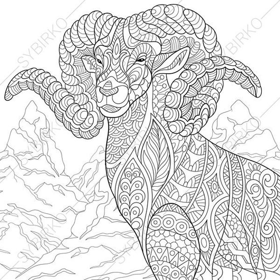 Mountain Goat. 2 Coloring Pages. Animal coloring book pages for Adults. Instant Download Print