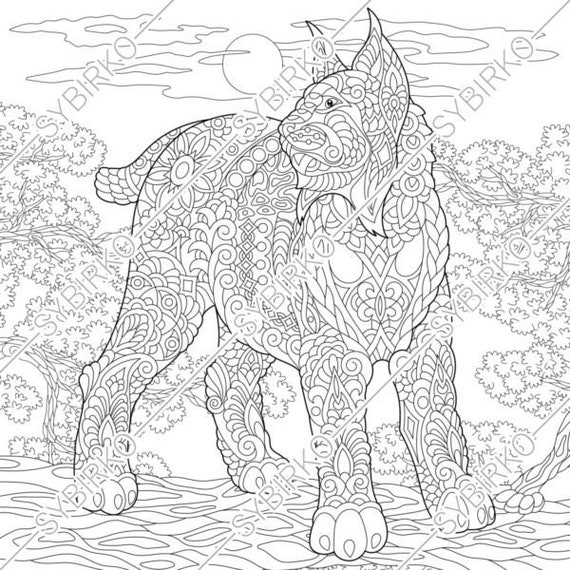 Coloring Pages Wildcat Lynx Bobcat Adult Coloring Pages Etsy